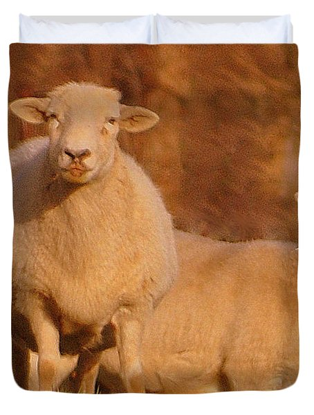 Duvet Cover featuring the photograph My Sheep ...   by Lydia Holly