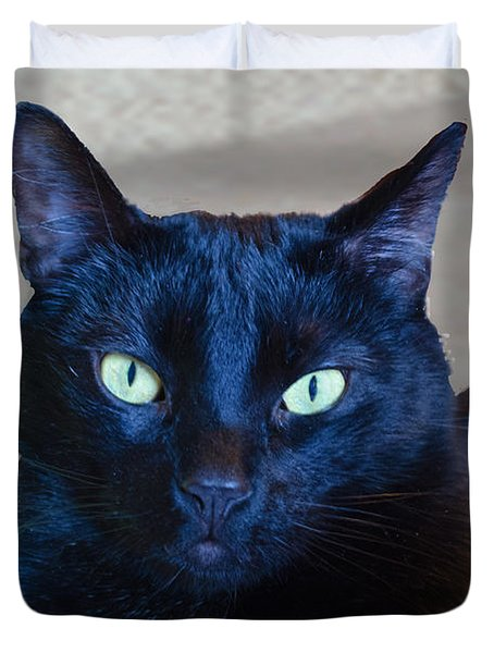 Mysterious Black Cat Duvet Cover by Luther Fine Art
