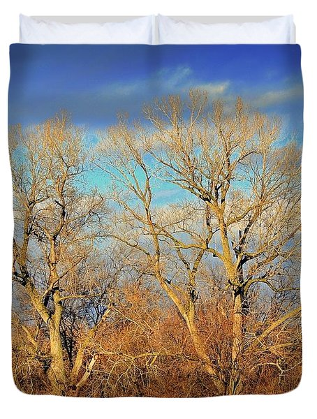 Naked Branches Duvet Cover by Marty Koch