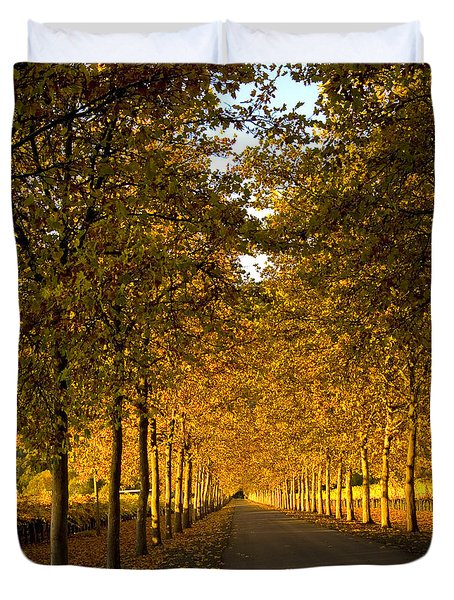 Napa Valley Fall Duvet Cover by Bill Gallagher