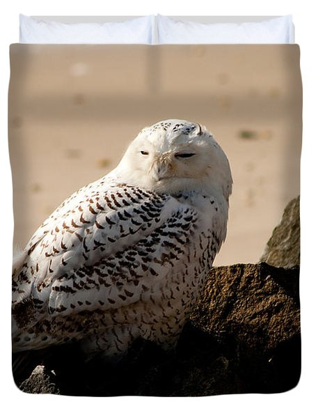 Napping On The Rocks Duvet Cover