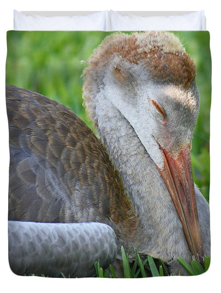 Napping Sandhill Baby Duvet Cover by Carol Groenen