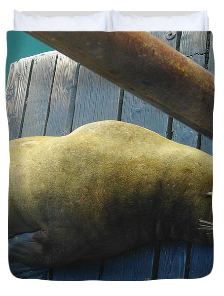 Napping Sea Lion Duvet Cover by Jeff Swan
