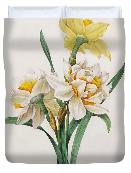 Narcissus Gouani Duvet Cover by Pierre Joseph Redoute