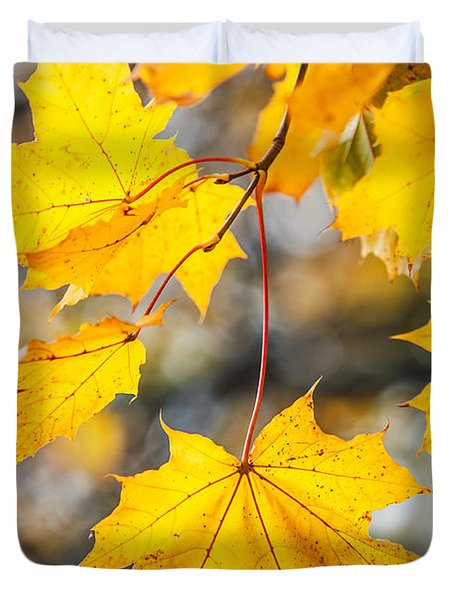 Natural Patchwork. Golden Mable Leaves Duvet Cover by Jenny Rainbow