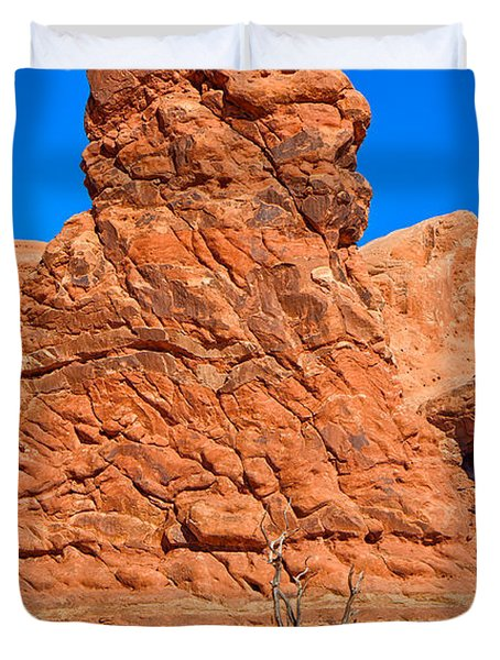 Duvet Cover featuring the photograph Natural Sculpture by John M Bailey