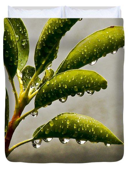 Natures Teardrops Duvet Cover by Carol F Austin