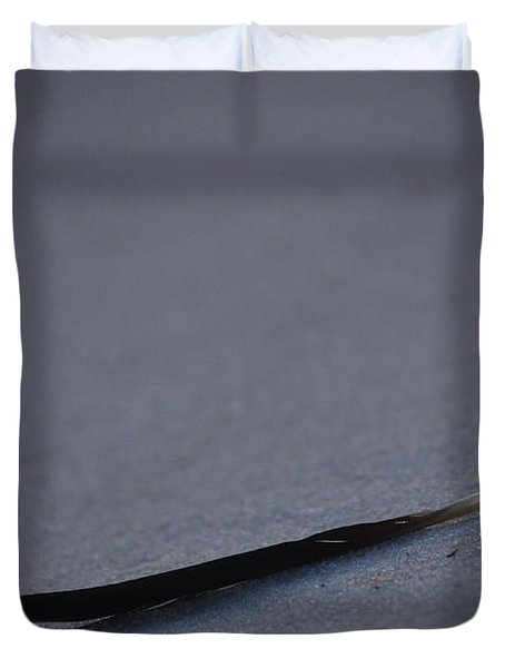 Duvet Cover featuring the photograph Navarre Beach Solo Bird Feather by Jeff at JSJ Photography