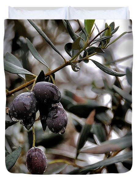 Nazareth Olives Israel Duvet Cover