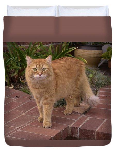 Neighborhood Cat Duvet Cover