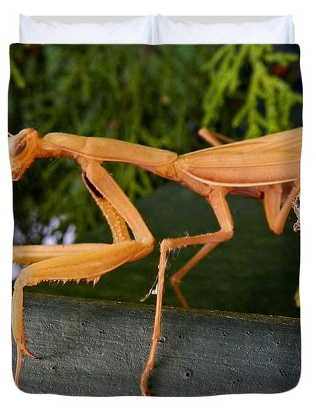 Neighborly Mantis Duvet Cover