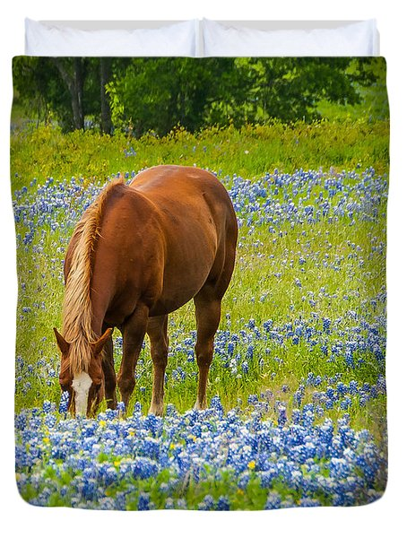 Nelly Grazing Among The Bluebonnets Duvet Cover by Dee Dee  Whittle