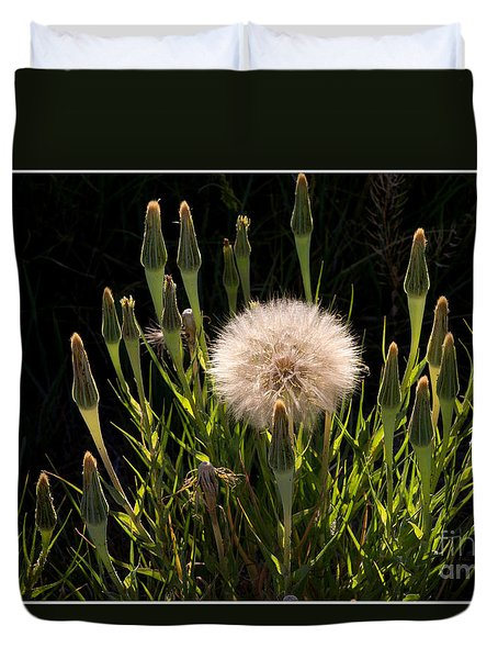 Neon Dandelion Duvet Cover by Angelique Olin