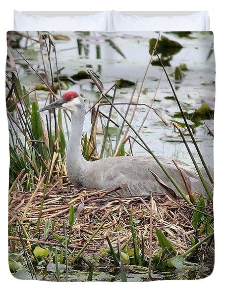 Nesting Sandhill Crane Duvet Cover by Carol Groenen