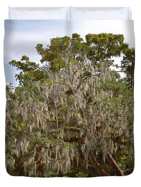 New Orleans Spanish Moss Duvet Cover by Christine Till