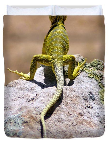 New Photographic Art Print For Sale Lizard Back Ghost Ranch New Mexico Duvet Cover