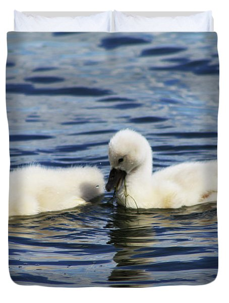 Duvet Cover featuring the photograph Newborn Mute Swans by Alyce Taylor