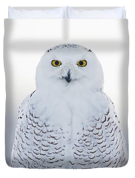 Nh Seacoast Snowy Owl  Duvet Cover by John Vose