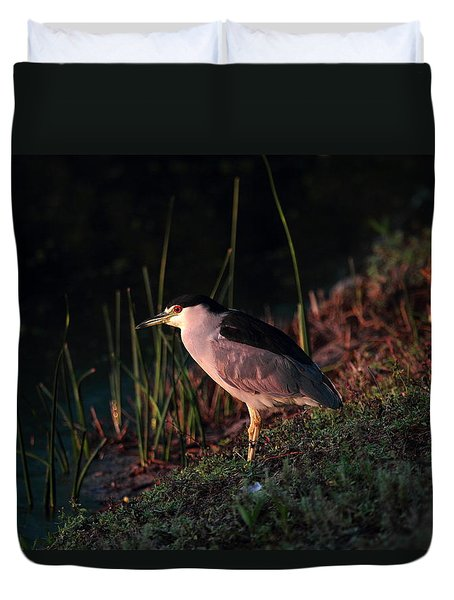 Night Heron  Duvet Cover by Duncan Selby