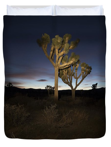 Night Light Painting Joshua Tree National Park Duvet Cover
