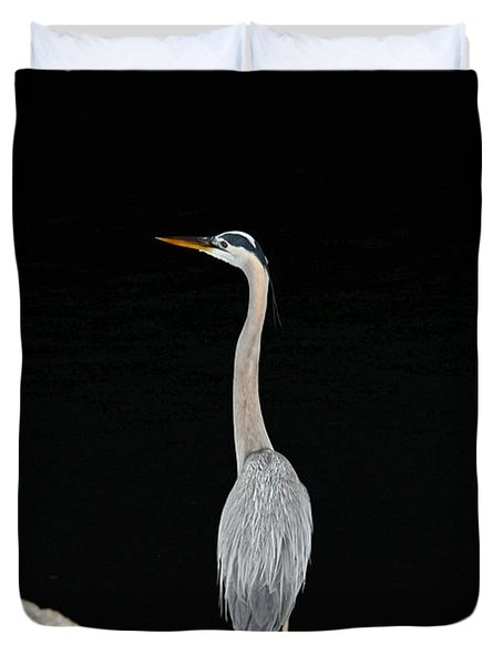 Night Of The Blue Heron 2 Duvet Cover
