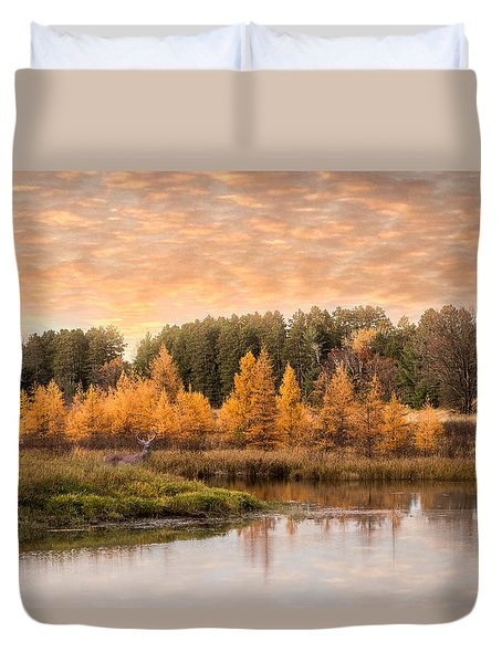 Duvet Cover featuring the photograph Tamarack Buck by Patti Deters