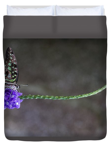 Butterfly - Tailed Jay II Duvet Cover