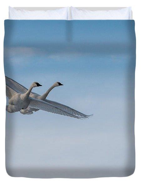 Trumpeter Swan Tandem Flight I Duvet Cover