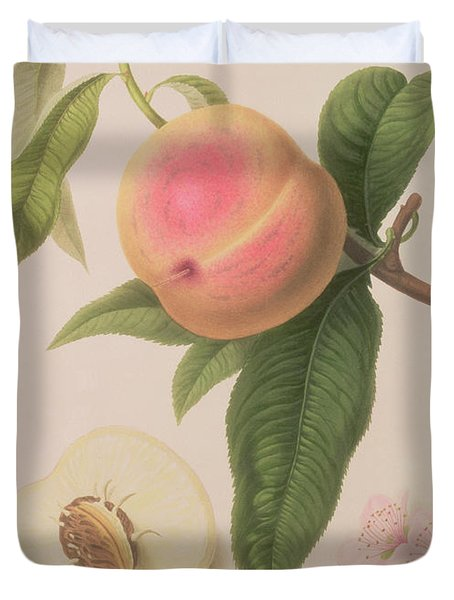 Noblesse Peach Duvet Cover