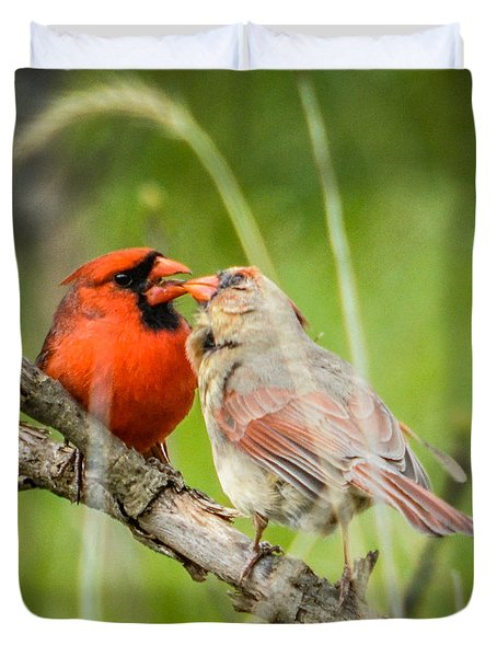 Northern Cardinal Male And Female Duvet Cover