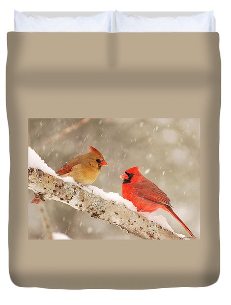 Northern Cardinals Duvet Cover