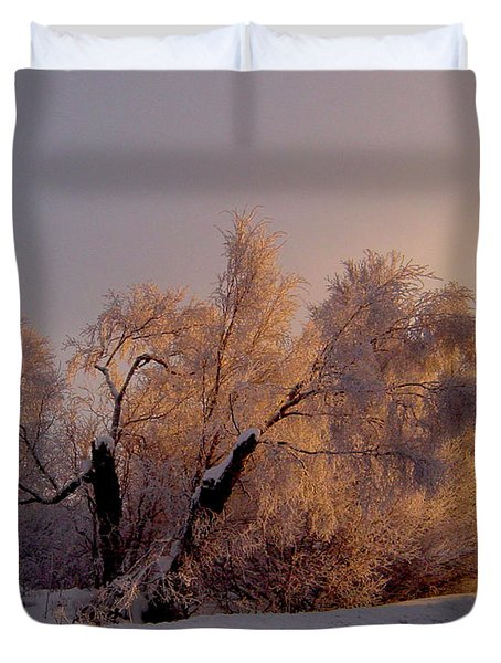 Duvet Cover featuring the photograph Northern Light by Jeremy Rhoades