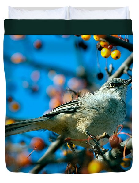 Northern Mockingbird Duvet Cover by Bob Orsillo