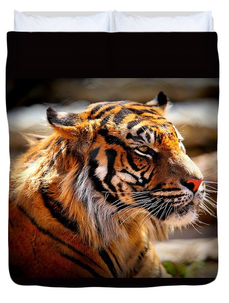 Not A Tigger Duvet Cover by Lynn Sprowl