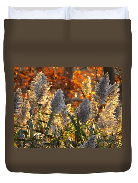 Duvet Cover featuring the photograph November Lights by Dianne Cowen