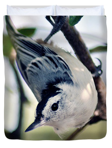 Nuthatch 623 Duvet Cover
