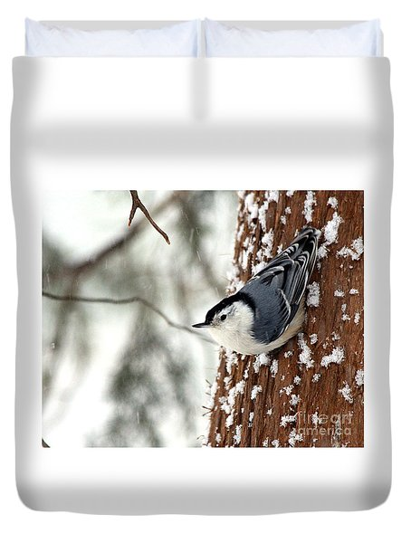 Nuthatch In Snow Storm Duvet Cover by Paula Guttilla