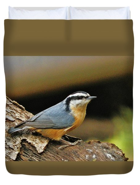 Duvet Cover featuring the photograph Nuthatch Pose by VLee Watson
