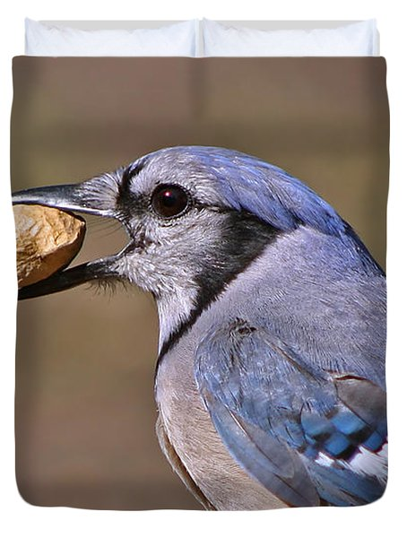 Nutty Bluejay Duvet Cover