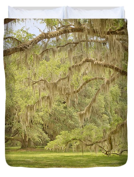 Oak Trees Draped With Spanish Moss Duvet Cover by Kim Hojnacki