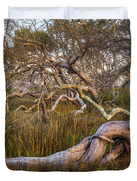 Oak Trees In The Marsh Duvet Cover by Debra and Dave Vanderlaan