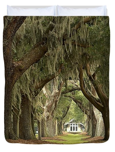 Oaks Of The Golden Isles Duvet Cover by Adam Jewell