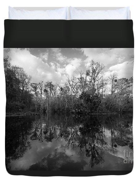 Ocklawaha Oxbow #2 Duvet Cover by Paul Rebmann