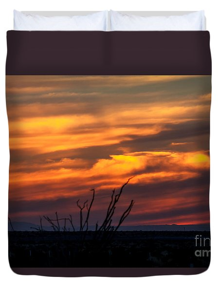 Ocotillo Sunset Duvet Cover by Robert Bales