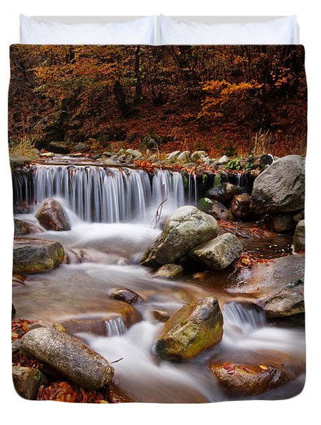 October Stream Duvet Cover by Mircea Costina Photography