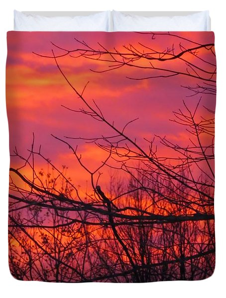 Oh What A Beautiful Morning Duvet Cover by Elizabeth Dow