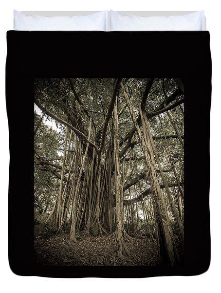 Old Banyan Tree Duvet Cover
