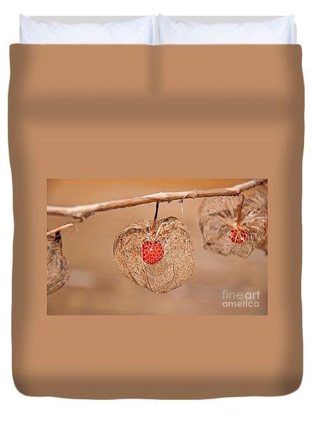 Old Chinese Lantern Pod Art Prints Duvet Cover