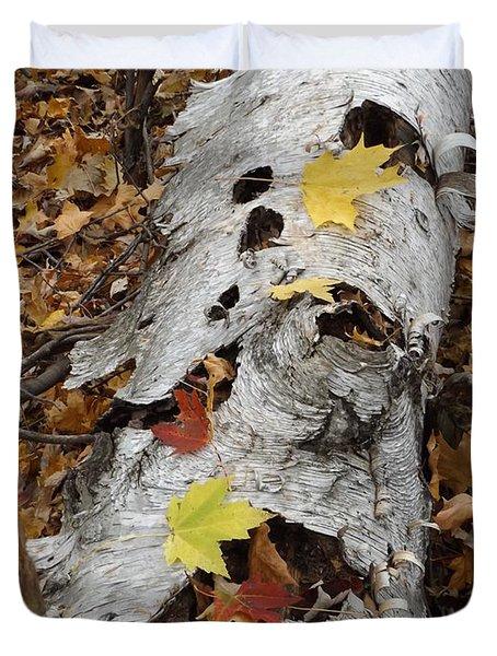 Old Fallen Birch Duvet Cover