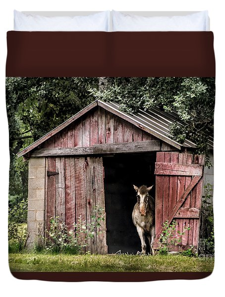 Old Gray Mare Duvet Cover by Debbie Green
